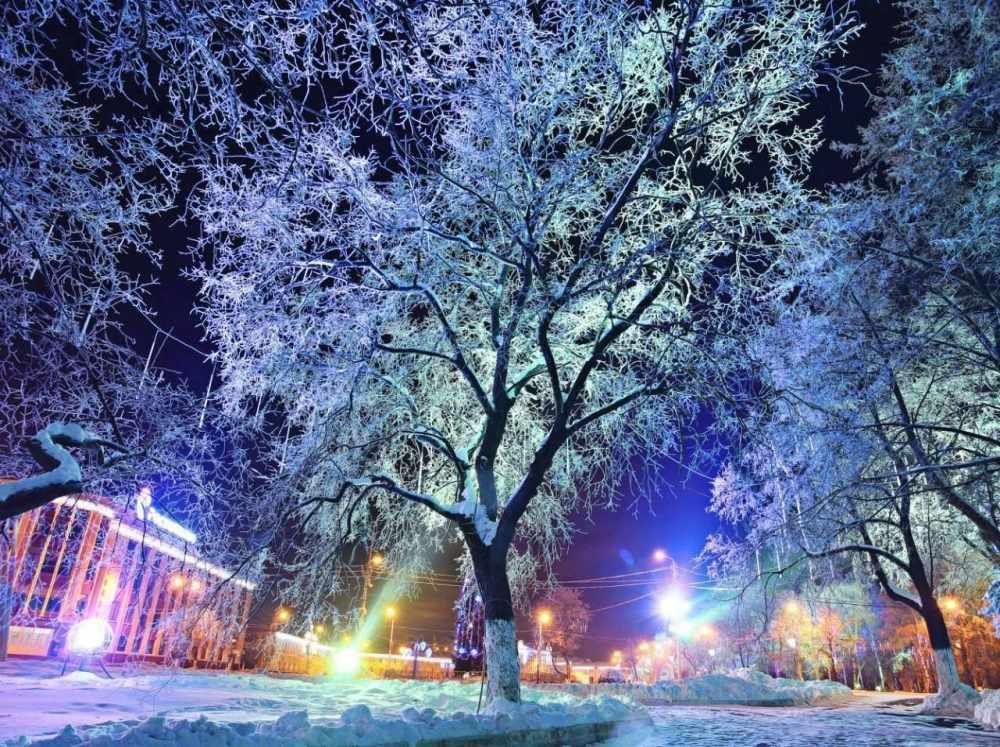 «Рождественская сказка в Вологде» вошла в топ-10 лучших новогодних фестивалей в России