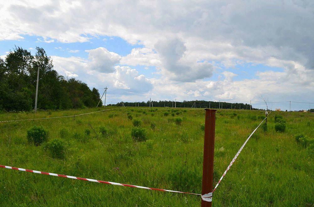 С 1 апреля любой житель страны сможет выбрать участок по программе «Вологодский гектар» в режиме онлайн