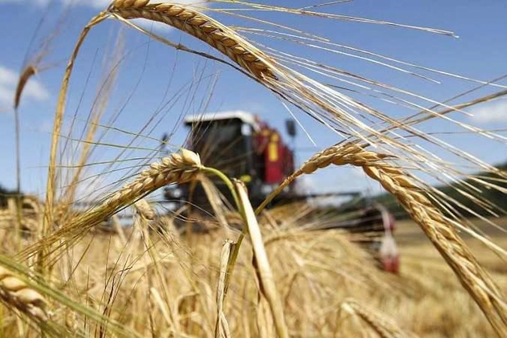 32 млн рублей на ГСМ получат вологодские аграрии из бюджета