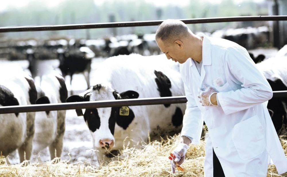 С 1 июля 2019 года вносятся изменения в перечень животноводческой продукции, подлежащей ветеринарной сертификации